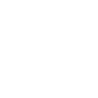 Legality Icon